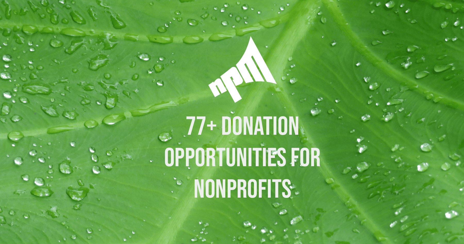 corporation donation opportunities