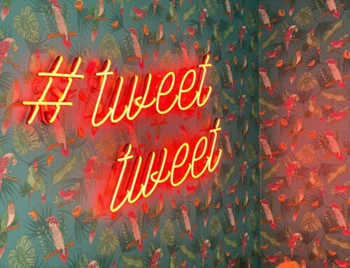 The Nonprofit's Guide to Gaining Twitter Followers